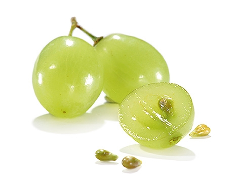 extrait de pépin de raisin resveratrol